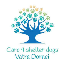 care4shelterdogs Vatra Dornei